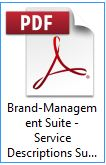 Brand-Management Suite - Service Descriptions Summary - Laser Guided Marketing